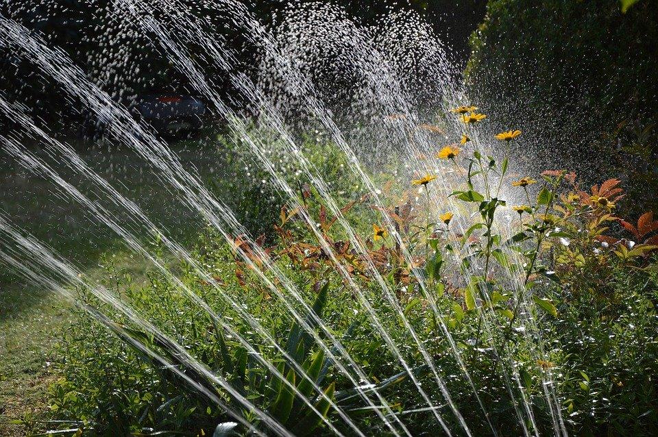 garden domotique arrosage