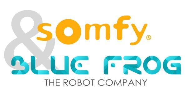 somfy blue frog